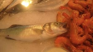 market fish w shrimp