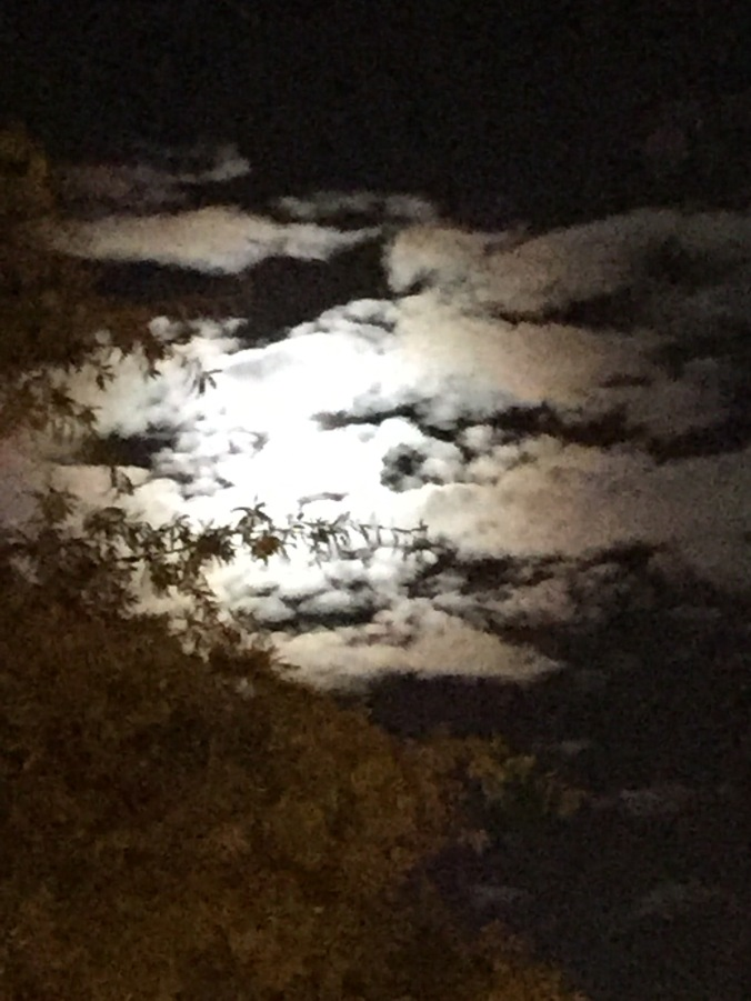 moon-1014