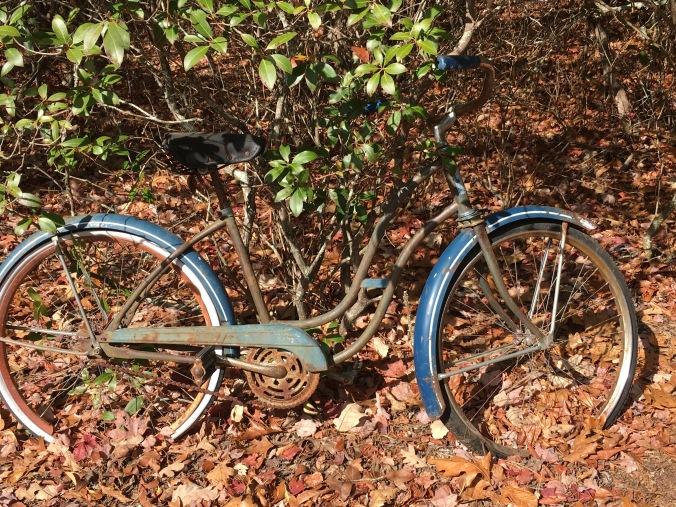 cindys-bike
