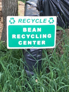 bean recycling