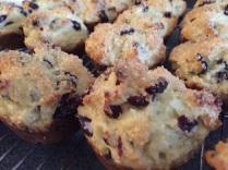 cran muffins