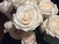 white roses best
