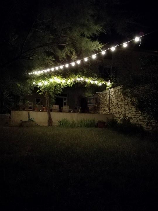 jardin la nuit